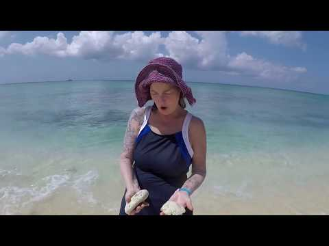 The Grand Cayman Islands Holiday 1