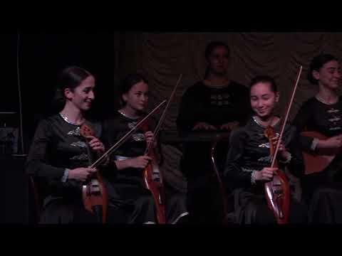 концерт абхазского народного инструмента