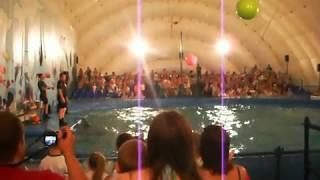 Московский Дельфинарий Барнаул