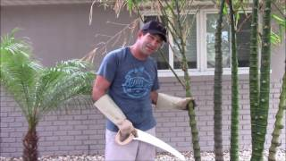 Soft Tip Yucca Trimming - Part 3 - Moving Down the Bed to the Bamboo