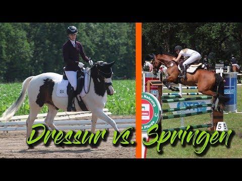 Dressur vs. Springen | SHOWTIME | #19/5 Beverstedt