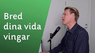 Bred dina vida vingar - Sveinung Hølmebakk