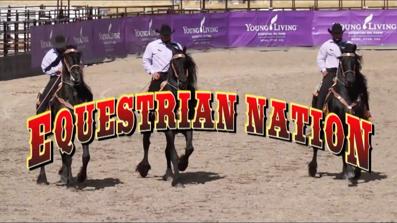 2016 Bison Premier 17 Living Quarters 4 Horse Trailer