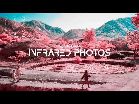 Infrared photography tutorial - DNG Profile thumbnail