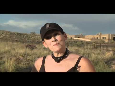 """Petrified Forest National Park rangers pile up """"cursed"""" wood"""