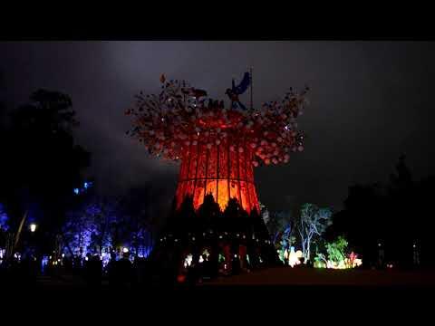 【 2020 台灣燈會 璀璨台中 -- 主燈秀 -- 森生守護 -- 光之樹 】