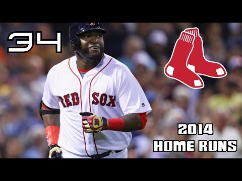 David Ortiz | 2014 Home Runs ᴴᴰ
