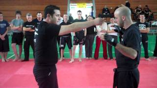Roy Elghanayan's Krav Maga & Israeli Jiu Jitsu Seminar in Rome, Italy