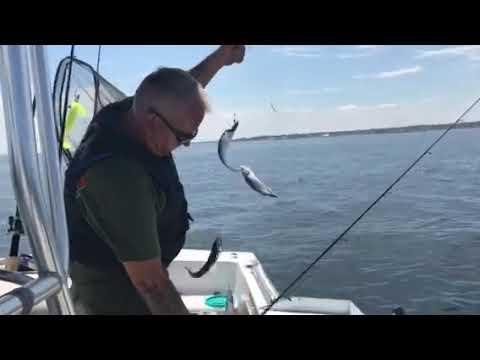 Mackerel Fishing Off Rye, NH