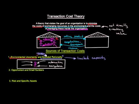 Transaction Cost Theory and Transaction Costs Sources | Introduction To Organisations | MeanThat