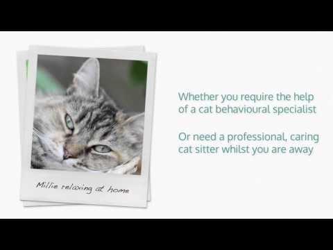 the-friendly-pet-nurse---horsham,-west-sussex