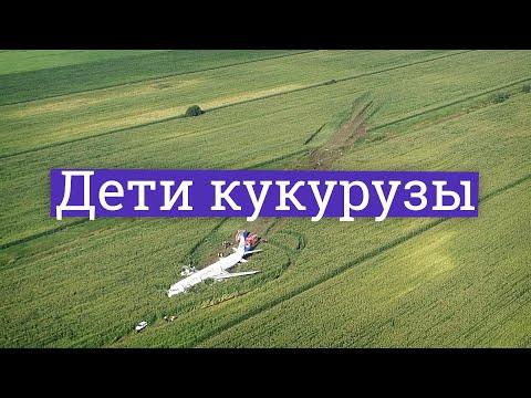 Посадка А321 в кукурузе. Что могут скрывать пилоты-герои?