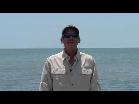 Texas Fishing Tips Fishing Report August 13 2020 Port Aransas Area With Capt. Monte Graham