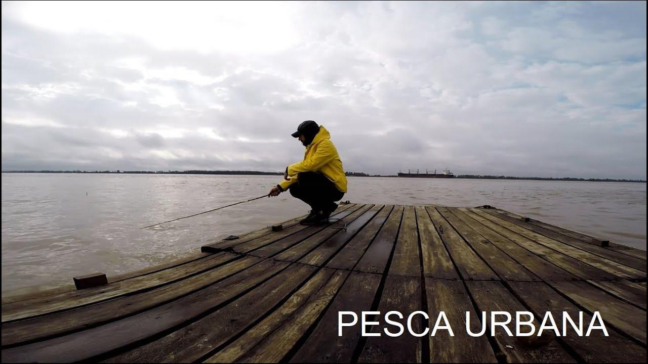 Pesca de pejerrey, PESCA Y COCINA, Pesca urbana.