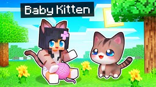 Playing as a BABY KITTEN In Minecraft!