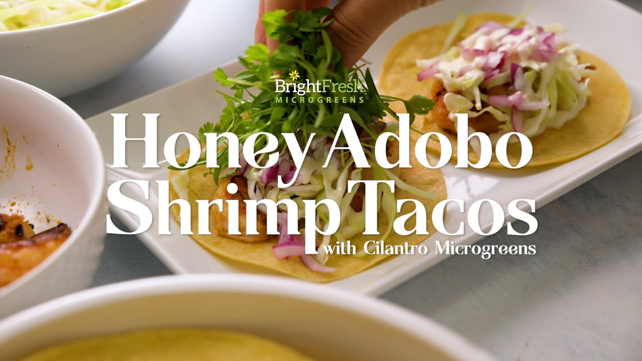 Honey Adobo Shrimp Tacos and Micro Cilantro