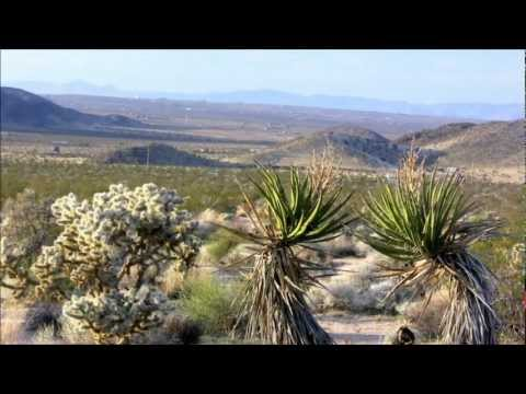 47 acres of land in Twentynine Palms, CA  for $49,000 (near Indian Cove - Joshua Tree)