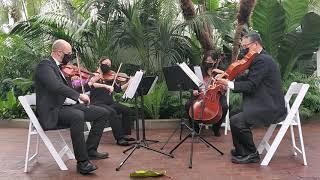 So Close Yet So Far, from Paradise, Elvis Presley ~ Columbus Musicians, LLC String Quartet