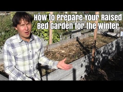 How to Prepare Your Raised Bed Garden for the Winter Season