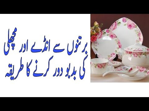 How to Clean a Smelly Dishwasher برتن سے بدبو ختم کرنا