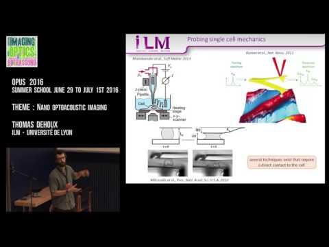 Thomas Dehoux - Nano optoacoustic imaging - Opus 2016