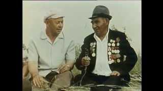 Яугир ат - Керчь! Память о боевом коне Керчь. Фильм 1986г.