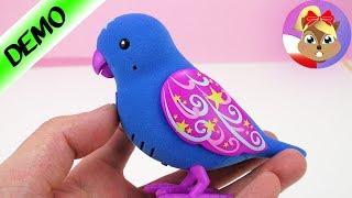 Śmieszna zabawka z Japonii | RANGS Cutie Bird - wkurzający PTAK | Baw się ze mną