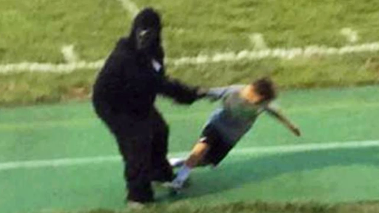 harambe mascot drags children at football game youtube