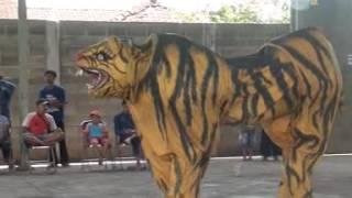 """"""" Macan Vs Banteng """" Loreng Gunting Soko  LGS"""