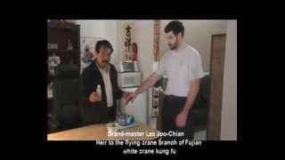 iroln palm medicine/ Lotion pour arts martiaux