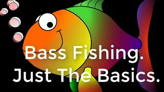 Bass Fishing Just the Basics Gifts For Fishermen