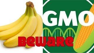 Are You Eating Dangerous GMO Bananas?