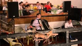 Bica de la Varbilau-imita 5 instrumente cu acordeonul