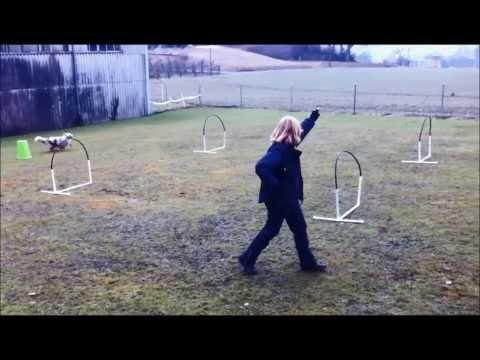 HoopersTraining 5.2.14