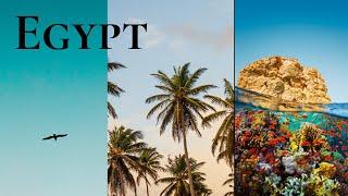 Египет Шарм Эл Шейх 2020 Работа во время карантина