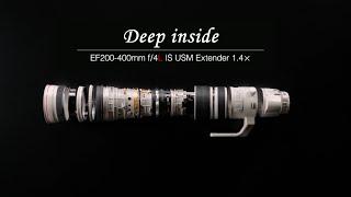 EF200-400mm f/4L IS USM Extender 1.4×