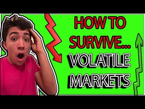 HOW TO SURVIVE A VOLATILE STOCK MARKET *explained w/ strategies*