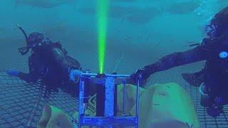 Futiris: la telecamera laser che...pesa il pesce! - futuris