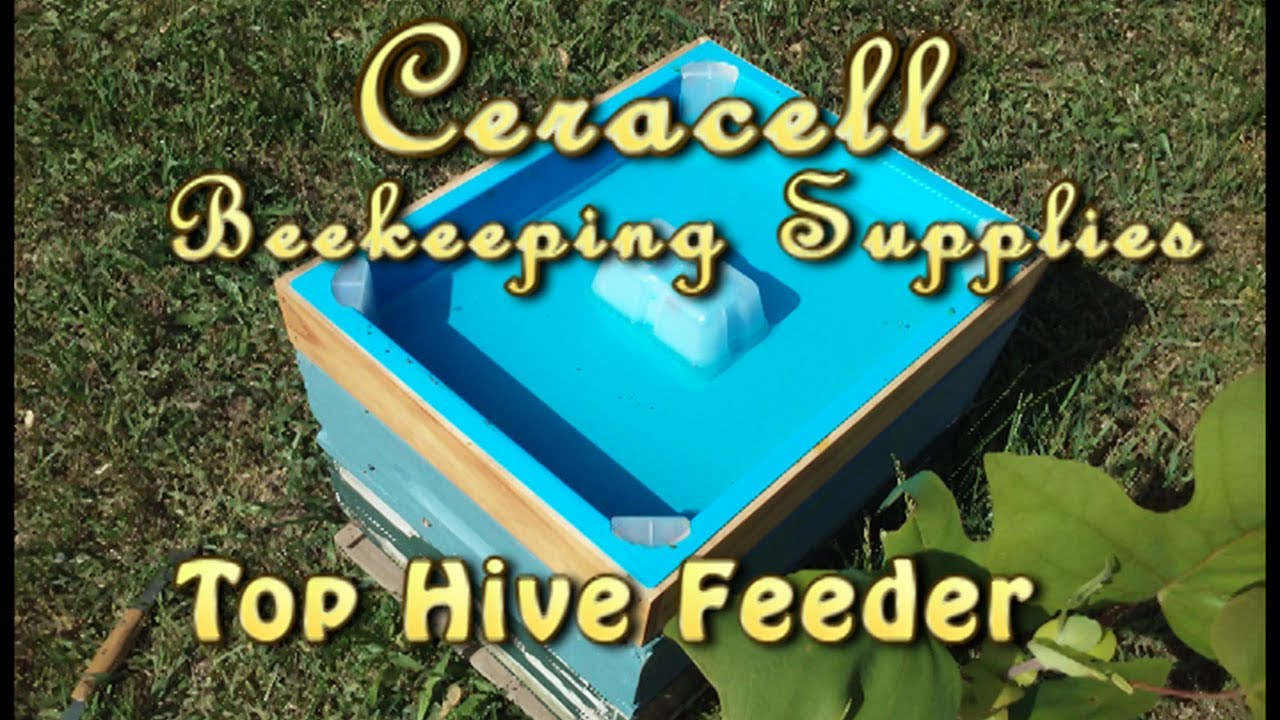 NEW!! BEE HIVE DEEP FRAME SYRUP FEEDER