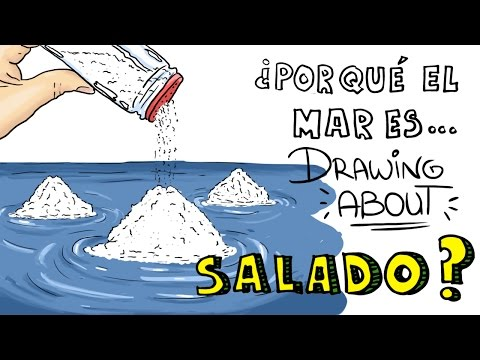 Why the ocean has a taste of salt?из YouTube · Длительность: 3 мин32 с
