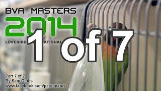 bva masters 2014 part 1 of 7