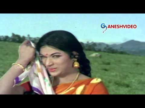 Bangaru Babu Songs   Chengavi Rangu Cheera   Akkineni Nageshwara Rao, Vanisri   Ganesh Videos