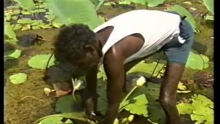 Sharing our Culture: a video for Australian children about Aboriginal and Islander ways 1992