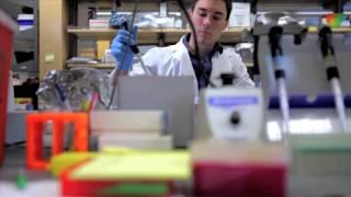 Diversity at Vanderbilt University School of Medicine