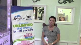 Pet Grooming, Unlimited Monthly Dog Wash.  Palm Harbor FL 34684