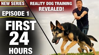 First 24 Hours with a TOTALLY UNTRAINED DOG! NEW SERIES: Reality Dog Training Episode 1