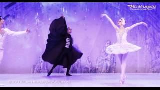 """P. Czajkowski """"Jezioro Łabędzie"""" – Narodowy Lwowski Teatr Opery i Baletu – XV Forum Humanum Video"""