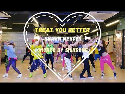 I LOVE ZUMBA / Treat You Better(Ashworth Remix) - Shawn Mendes / CHOREO BY SHINDONG