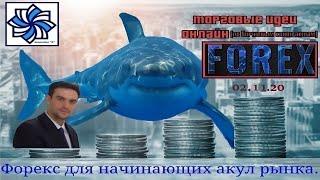 Форекс Точки входа и цели по сделкам 02 11 20 Прогноз и торговый план Евро доллар фунт золото