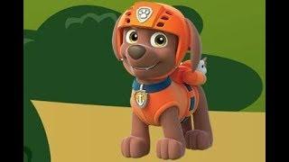 Щенячий патруль пазлы: Зума (PAW Patrol Zuma Puzzle)